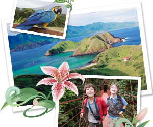 The Great Green Challange – Win Trip To Costa Rica